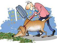 image from economictimes.indiatimes.com