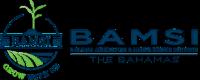 Bamsi new logo header