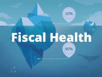 Fiscalhealth
